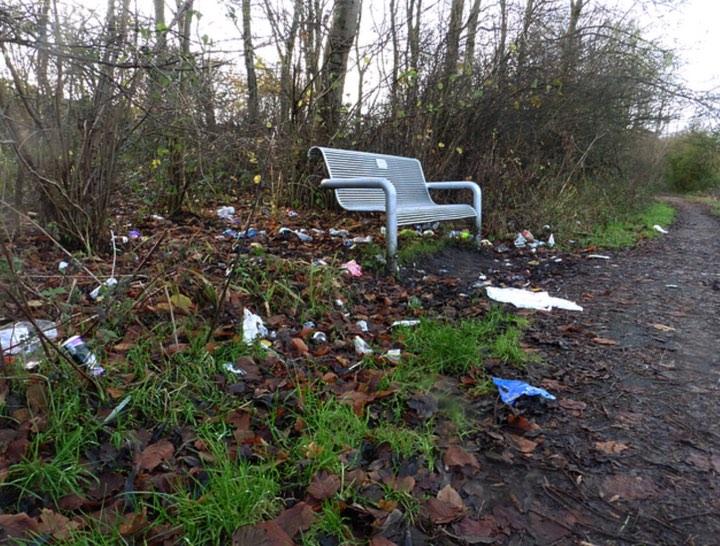 bench litter