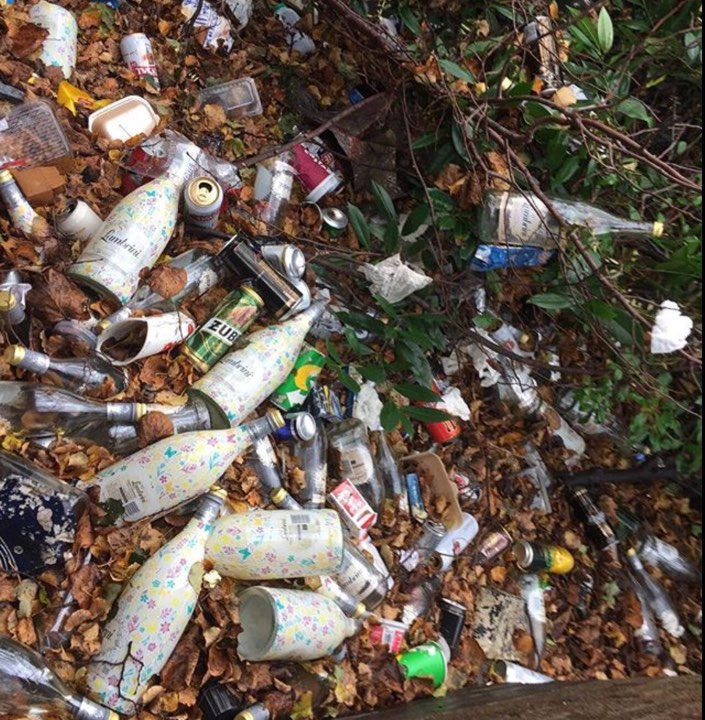 lambrini litter.jpg